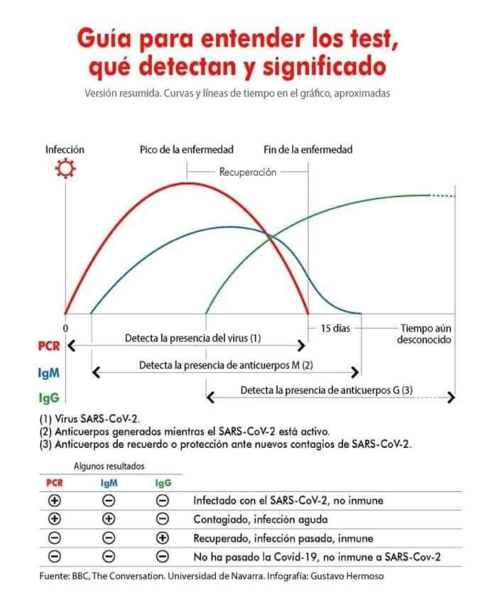 explicación anticuerpos test del covid-19